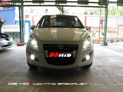 DS Projector