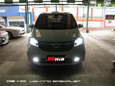 DS HID