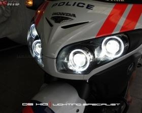 DS Projector Bixenon + DS HID 6000K + Angel Eyes + Blackhousing