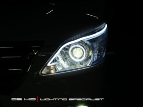 DS Projector Bixenon + DS HID + Angel Eyes + Led Stip